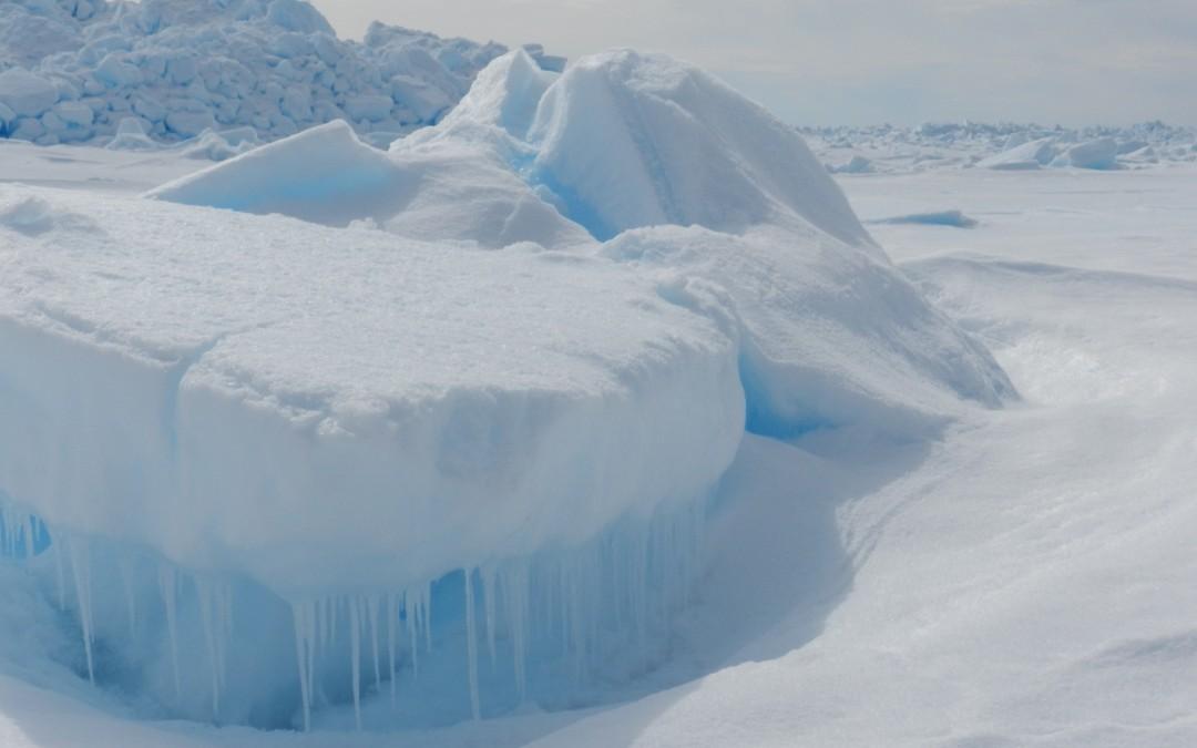 Frozen life!