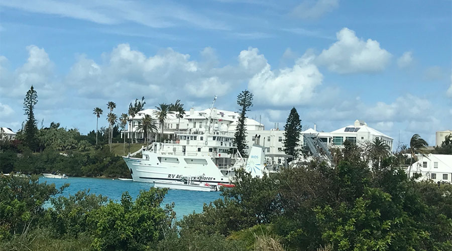 "PhD student position available in new NSF project: ""Zooplankton mediation of particle flux"" in collaboration with Leocadio Blanco-Bercial and Amy Maas, Bermuda Institute of Ocean Sciences"